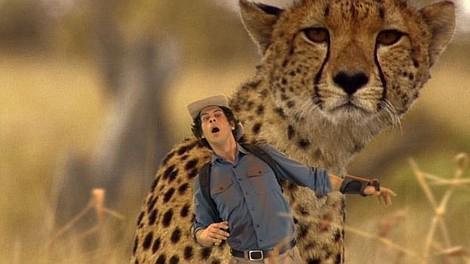 Andy i zwierzęta świata: Safari Okawango (33)
