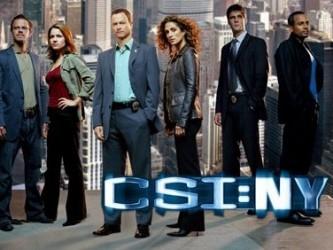 CSI: Kryminalne zagadki Nowego Jorku 4: Huczne zabójstwo (8)