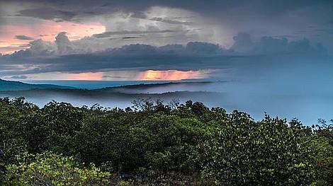 Dzika Kolumbia: Raj na ziemi