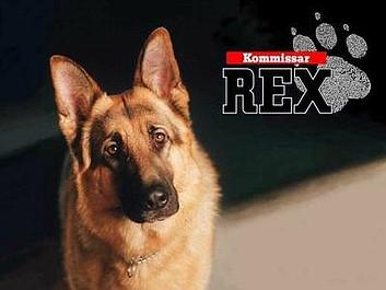 Komisarz Rex 8: Zamach na Reksa (110)