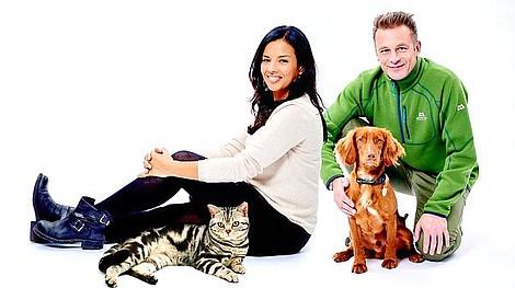Koty kontra psy (2)