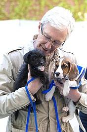Paul O'Grady: z miłości do psów 5 (8)