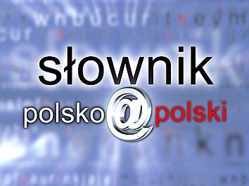 Słownik polsko@polski (364)