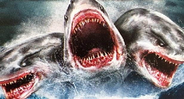 Atak W Nowej Zelandii Film Gallery: Atak Trzygłowego Rekina