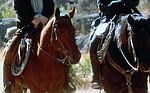 Kino z historią: Strażnicy Teksasu